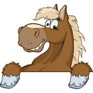 Stop Horseing Around!